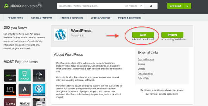 11-WordPress