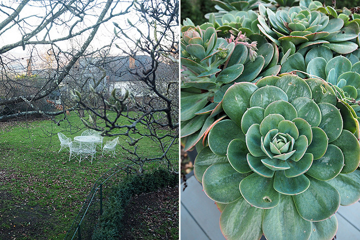 Hatherley-Birrell-garden