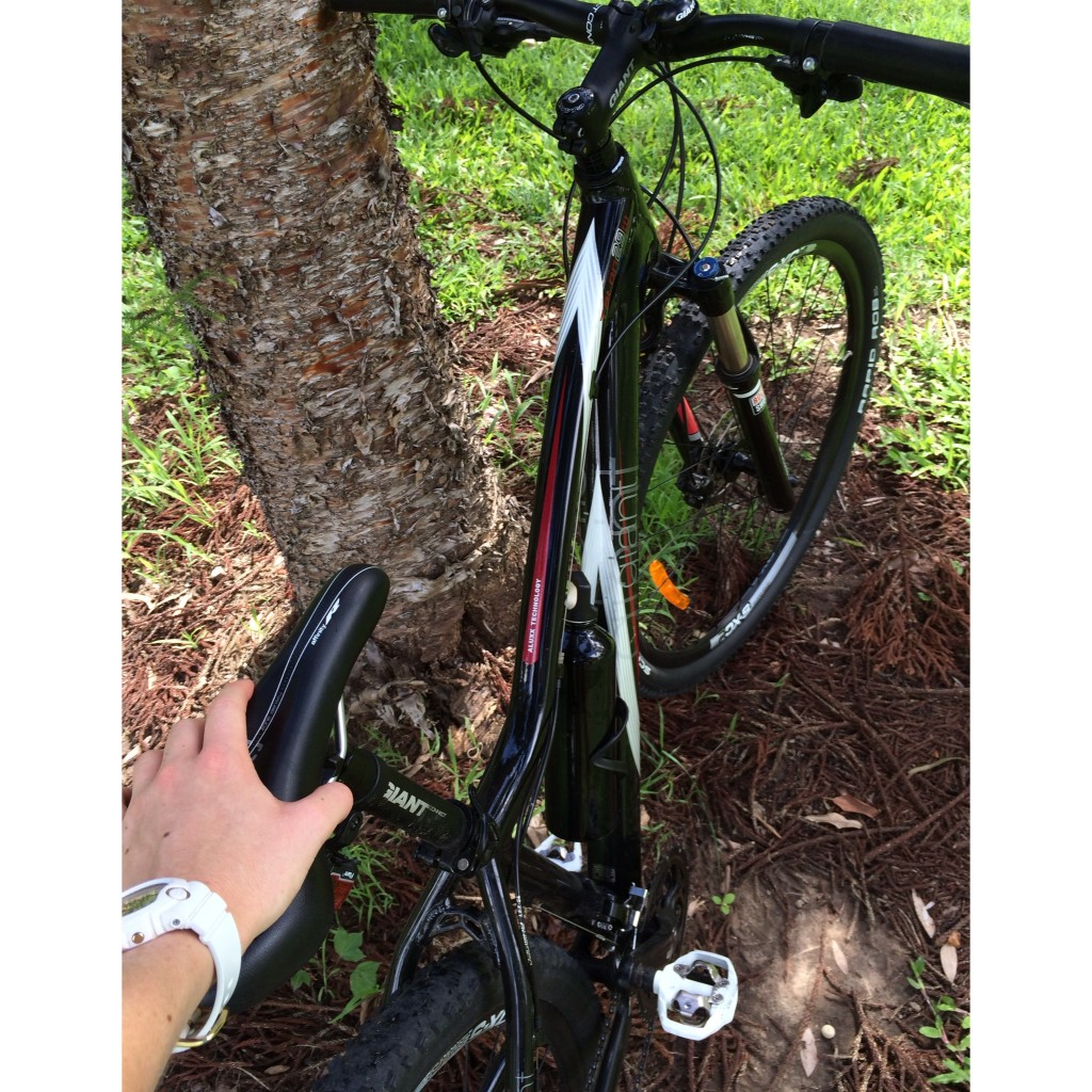 Image 4-bike