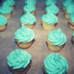 Vanilla Cupcakes with Vanilla Buttercream Icing