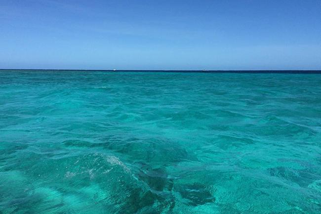 amedee-island-water