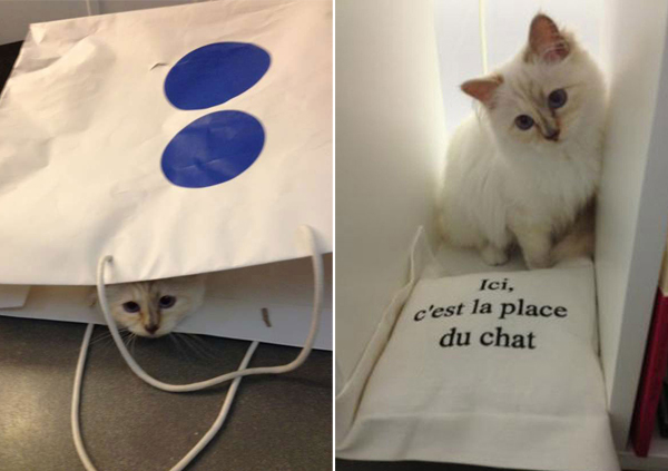 choupette-bag