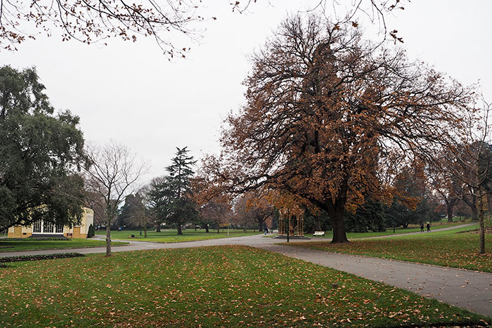 city-park-launceston