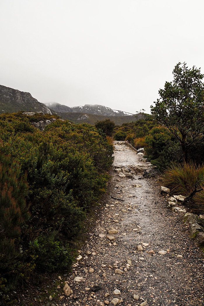 cradle-mountain-hike6
