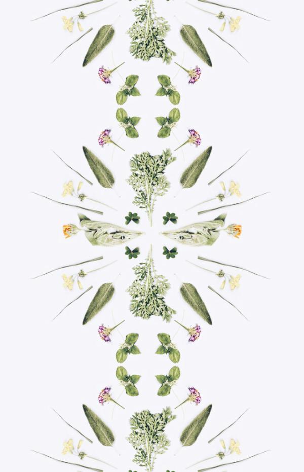 flowerpower_cocorrina2