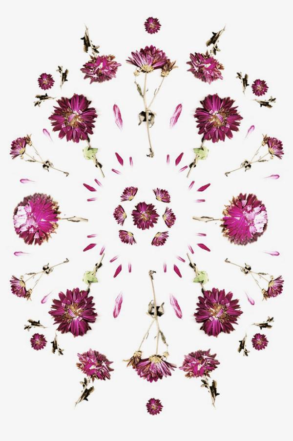 flowerpower_cocorrina5