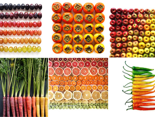 food-gradients