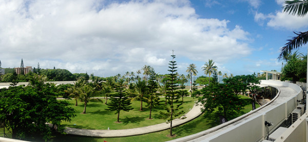 hilton-view