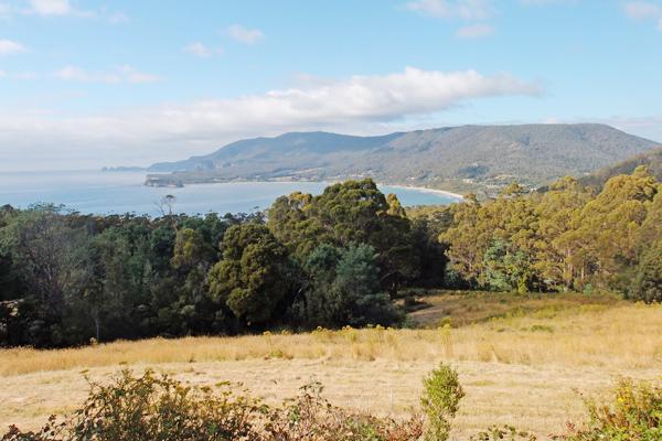 kates-berry-farm-view