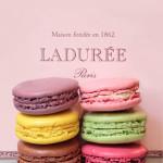 Ladurée is opening in Sydney in July
