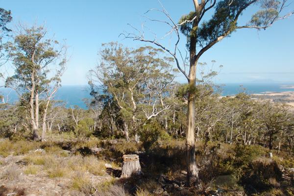 rocky-hill-retreat-view1