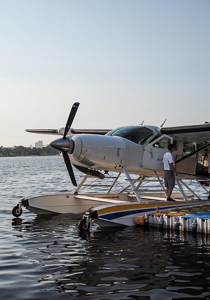 seawings-plane