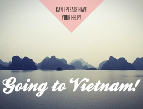 vietnam-help