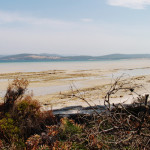 Travel Guide: Bruny Island, Tasmania